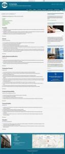 WEBSITE ADVERT v2